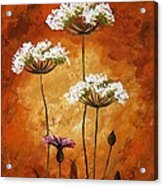 Wild Flowers 041 Acrylic Print