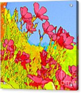 Wild Flowers In Bloom Acrylic Print