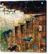 Wild Horse Canyon Acrylic Print