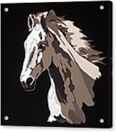 Wild Horse With Hidden Pictures Acrylic Print