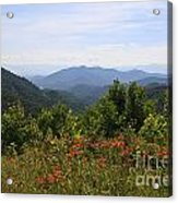 Wild Lilies With A Mountain View Acrylic Print