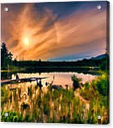 Wild Maine Woods In Baxter State Park Acrylic Print