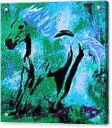 Wild Midnight Acrylic Print