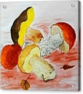 Wild Mushrooms Acrylic Print