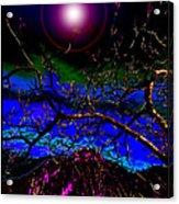 Wild Plum In New World Dawn Acrylic Print