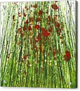 Wild Poppies And Grasses No2 Acrylic Print