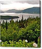 Wild Roses At Photographer's Point Overlooking Bonne Bay In Gros Morne Np-nl Acrylic Print