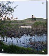 Wild Wetland Acrylic Print