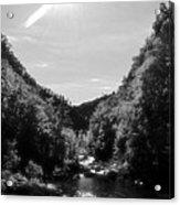 Wilderness Of Appalachia Acrylic Print