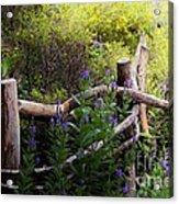 Wildflower Fence  Acrylic Print