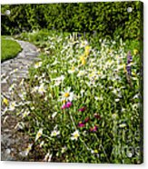 Wildflower Garden And Path To Gazebo Acrylic Print