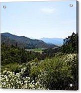 Wildflower Mountain View Acrylic Print