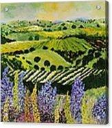 Wildflower Ridge Acrylic Print