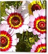 Wildflowerd Wide 1 Acrylic Print