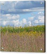 Wildflowers And Ornamental Grass Acrylic Print