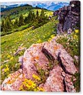 Wildflowers And Pink Rocks Acrylic Print