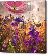 Wildflowers At Dawn Acrylic Print