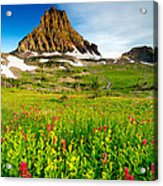 Wildflowers At Logan Pass Acrylic Print