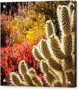 Wildflowers Ignite  Acrylic Print