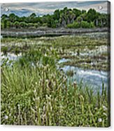 Wildlife Refuge Reflections Acrylic Print