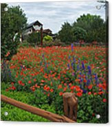 Wildseed Farms Acrylic Print