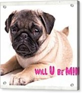 Will U Be Mine? Acrylic Print