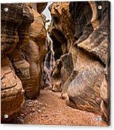 Willis Creek Slot Canyon 6 - Grand Staircase Escalante National Monument Utah Acrylic Print