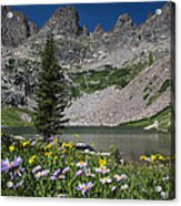 Willow Lake Acrylic Print by Michael J Bauer
