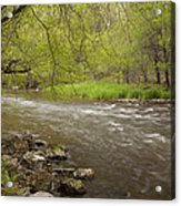Willow River 3 Acrylic Print