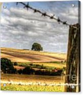 Wiltshire Acrylic Print