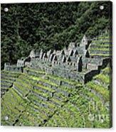 Winay Wayna Inca Trail Peru Acrylic Print
