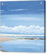 Winchelsea Gulls Acrylic Print