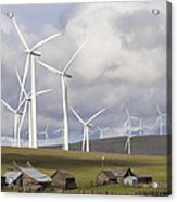 Wind Farm By Cattle Ranch In Washington State Acrylic Print