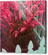Wind In The Grass - Red Acrylic Print