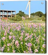 Wind Turbine And Flowers Acrylic Print by Gynt