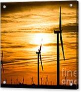 Wind Turbine Farm Picture Indiana Sunrise Acrylic Print