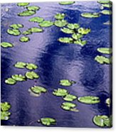 Wind Whirling The Lake Acrylic Print