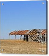 Windblown Barn Acrylic Print