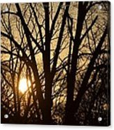 Winding Down The Evening Acrylic Print