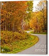 Winding Fall Road Acrylic Print