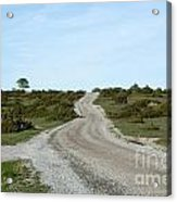 Winding Gravel Road Through A Landscape With Lots Of Junipers Acrylic Print