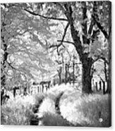Winding Journey Through The Blue Ridge Acrylic Print
