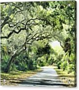 Winding Path Acrylic Print