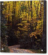 Winding Road - Fall Color Acrylic Print