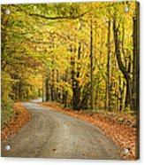Winding Rural Road With Fall Colors Acrylic Print