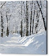 Winding Snowy Road In Winter Acrylic Print