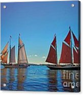 Windjammers  At A Maine Harbor Acrylic Print