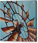 Windmill And Hawk Acrylic Print