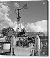 Windmill Acrylic Print by Gordon  Grimwade