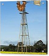 Windmill In A Canola Field Acrylic Print